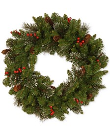 "24"" Crestwood Spruce Wreath with Silver Bristle, Cones, Red Berries and Glitter"