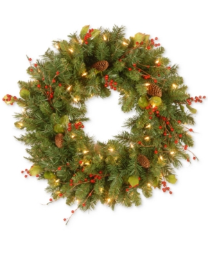 National Tree Company 24 Classical Collection Wreath with 50 Clear Lights