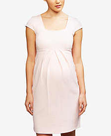 Isabella Oliver Maternity Ruched A-Line Dress