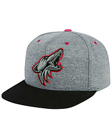 Mitchell & Ness Arizona Coyotes Heather Snapback Cap