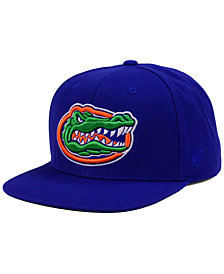 Top of the World Florida Gators Extra Logo Snapback Cap