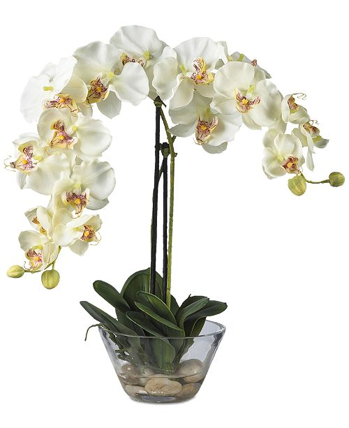 Nearly Natural Phalaenopsis Flower Arrangement with Glass Vase