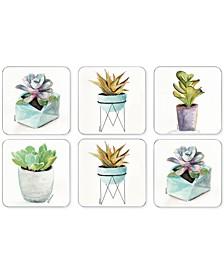 Pimpernel Succulents Set of 6 Coasters