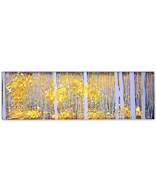"Trademark Global Roderick Stevens PanorAspens Grey Forest 16"" x 47"" Canvas Art Print"