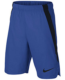 Nike Big Boys Colorblocked Training Shorts
