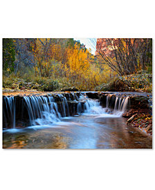 "Pierre Leclerc 'Zion Autumn' 30"" x 47"" Canvas Wall Art"