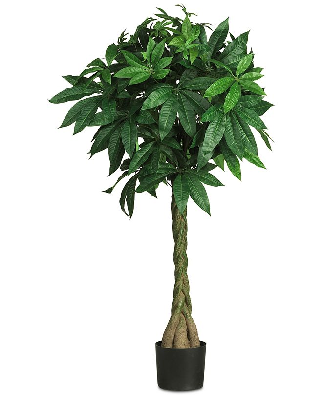 "Nearly Natural 51"" Artificial Braided Money Tree"
