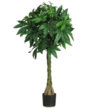 Nearly Natural 51 Artificial Braided Money Tree