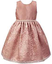 Jayne Copeland Toddler Girls Floral Organza Burnout Dress