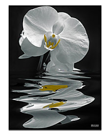 "Ready2HangArt 'White Orchid' Oversized 40"" x 30"" Canvas Art Print"