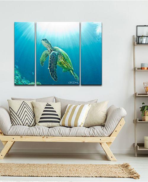 Ready2HangArt \'Sea Turtle\' 3-Pc. Canvas Art Print Set - Wall Art ...
