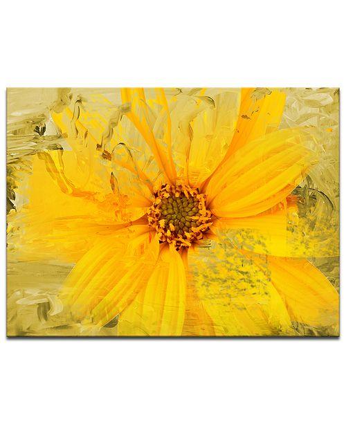 Ready2HangArt 'Painted Petals XXXVI' Canvas Wall Decor