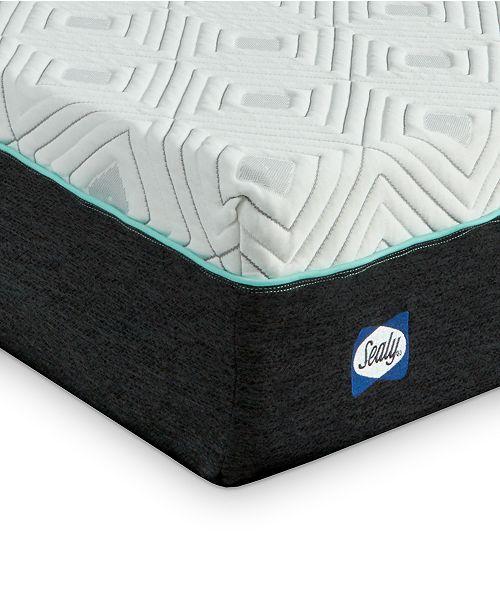 Sealy To Go 10 Plush Memory Foam Mattress Quick Ship Mattress In