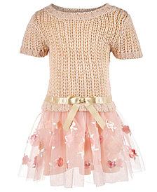 Blueberi Boulevard Baby Girls Sweater Dress