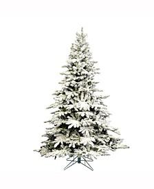 7.5' Flocked Utica Fir Artificial Christmas Tree Unlit