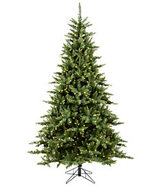 6.5' Camdon Fir Artificial Christmas Tree with 600 Warm White LED Lights