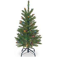 National Tree 3' Kingswood Fir Wrapped Pencil Tree with 50 Multi Lights