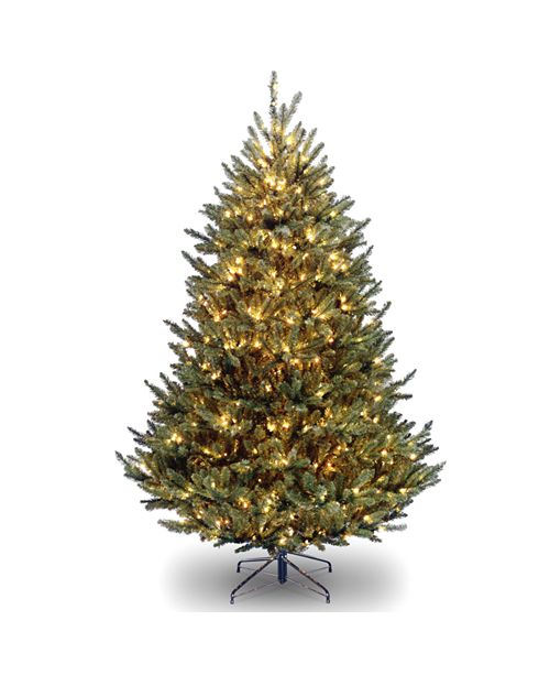 National Tree Company National Tree 7 .5' Natural Fraser Fir Tree With 1000 Clear Lights