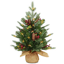 National Tree Company 2' Feel Real(R)  Nordic Spruce Small Tree with Cones & Red Berries in Burlap with 50 Warm White LED Lights