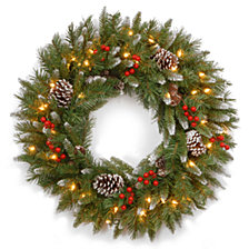 "National Tree Company 24"" Frosted Berry Wreath with 50 Clear Lights"