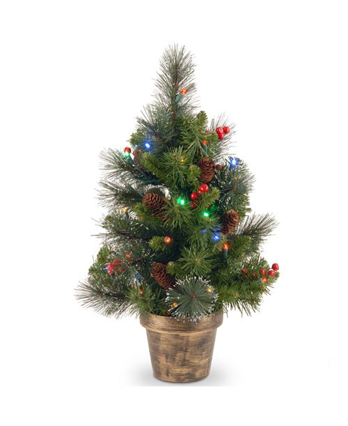 National Tree Company 2' Crestwood Spruce Small Tree with Silver Bristle, Cones, Red Berries and Glitter in a Plastic Bronze Pot with 35 Battery Operated Multi LED Lights