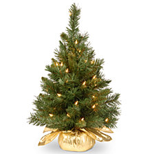 "National Tree Company 24"" Majestic Fir Tree in Gold Cloth Bag with 35 Clear lights"