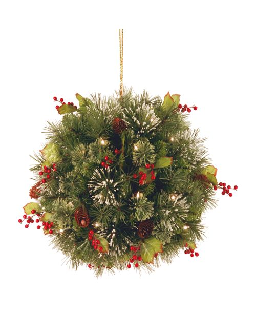 """National Tree Company National Tree 16"""" Wintry Pine(R) Kissing Ball with Battery Operated Warm White LED Lights"""