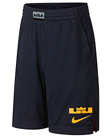 Nike Big Boys Dry LeBron Graphic Shorts