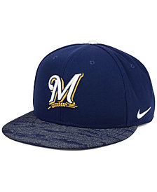 Nike Milwaukee Brewers Reverse New Day Snapback Cap