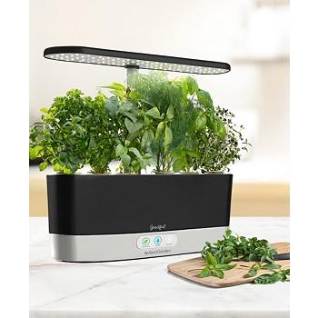 AeroGarden Harvest Slim Countertop Garden & Gourmet Herbs Seed Kit