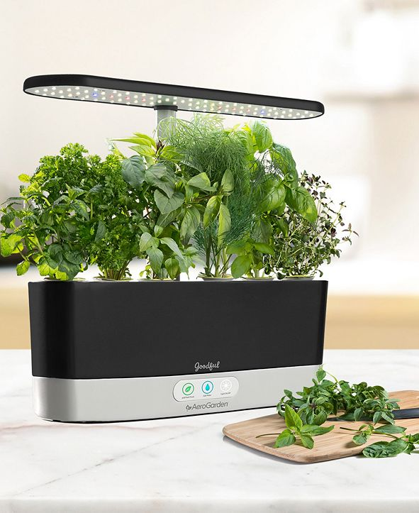Goodful by AeroGarden Harvest Slim Countertop Garden & Gourmet Herbs Seed Kit