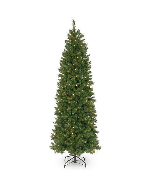 National Tree Company National Tree 6 .5' Pennington Fir Hinged Pencil Tree with 250 Clear Lights