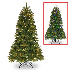 National Tree 6 ft. Power Connect Newberry Slim Spruce with Dual Color LED Lights