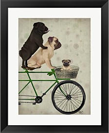 Pugs On Bicycle By Fab Funky Framed Art