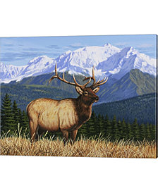 Surveying His Domain By William Vanderdasson Canvas Art