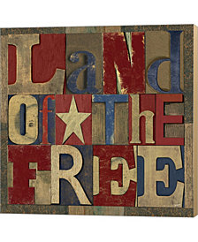 Patriotic Printer 2 By Tara Reed Canvas Art