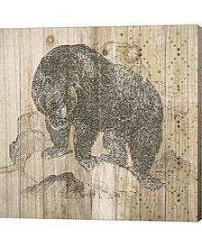 Natural History Lod4 By Elyse Deneige Canvas Art