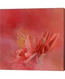Salmon Hibiscus 3 By Jai Johnson Canvas Art
