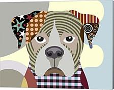 Boxer Dog By Lanre Adefioye Canvas Art