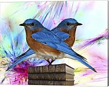 Twin Blue Bird By Ata Alishahi Canvas Art