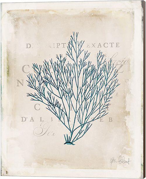 Metaverse Sea Garden Ii By Katie Pertiet Canvas Art
