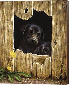 Peek-A-Boo by John Silver Canvas Art