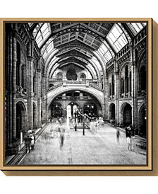 Amanti Art Natural History Museum of London Canvas Framed Art