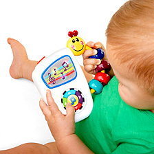 Baby Einstein Take Along Tunes Musical Baby Toy