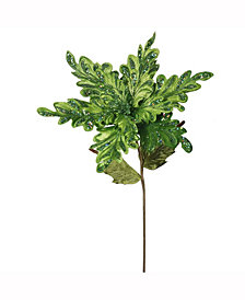 "Vickerman 15"" Lime Velvet Poinsettia Artificial Christmas Pick, 3 Per Bag"