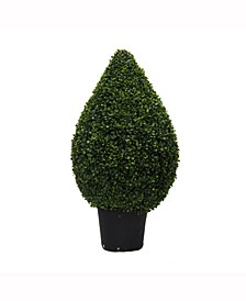 "36"" High X 20"" Wide Boxwood Teardrop Shaped Bush Is Uv Resistant"