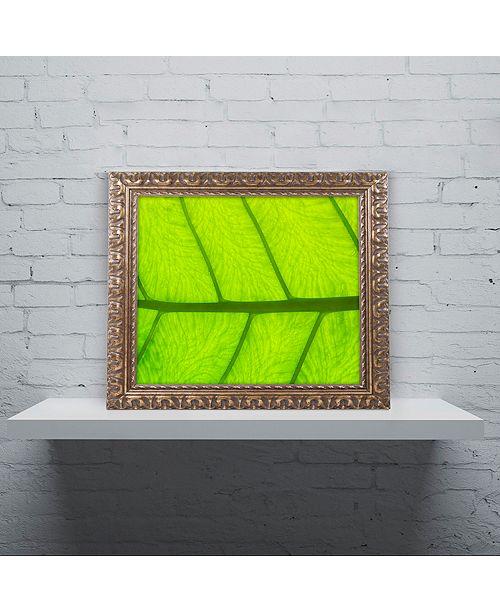 """Trademark Global Cora Niele 'Leaf Texture III' Ornate Framed Art, 11"""" x 14"""""""