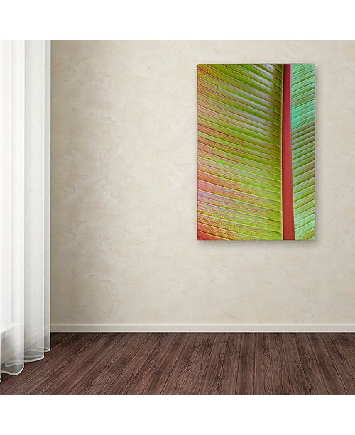 "Trademark Global Cora Niele 'Leaf Texture VI' Canvas Art, 22"" x 32"""