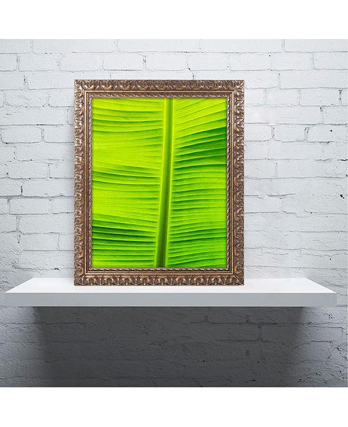 """Trademark Global Cora Niele 'Leaf Texture VIII' Ornate Framed Art, 11"""" x 14"""""""
