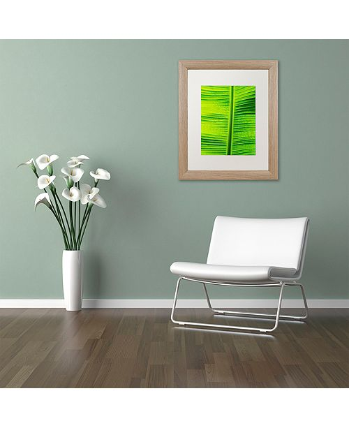 "Trademark Global Cora Niele 'Leaf Texture VIII' Matted Framed Art, 16"" x 20"""